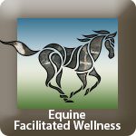 TP_Equine_Wellness